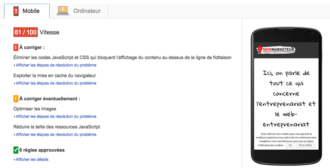 Résultat Google Page Speed Mobile